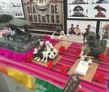 jbbr_SPECTRE_Set_Visit_Mexico (14).JPG